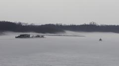 MississippiRiver_SAF0319 (sara97) Tags: copyright©2019saraannefinke fog foggy mississippiriver missouri photobysaraannefinke saintlouis