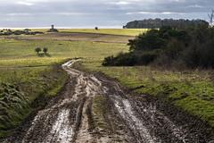 A Muddy Winter Track (stevedewey2000) Tags: salisburyplain sptaeast spta landscape track byway road way sony 70300g kenko14xtc tc teleconverter