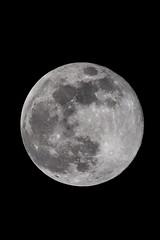39.Súper luna de nieve (Manupastor43) Tags: supersnowmoon snowmoon febrero night sky cielo astrofotografia españa lunadenieve superluna luna moon 150600mm tamron eos canon