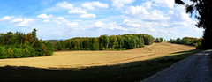 End of Summer | Ende des Sommers - Panorama - Oberfranken, DE (André-DD) Tags: maintal oberes sommer summer sonne sun outside wald trees tree baum bäume city sky water building road grass franken bayern bavaria deutschland germany mountain landscape forest