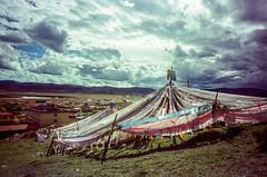 Tower of Prayer Flags (hiphopmilk) Tags: copyright©jaredyehwooehmoehfilms konica offroad 現場監督 zoom 35mm 135film film analog analogue jaredyeh hiphopmilk kodak travel china sichuan aba hongyuan longrang tibetan sky cloud tower prayerflags