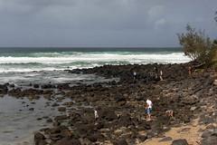 Everybody Look Down ... Now (armct) Tags: basalt rockpool search curious children adolescents surf surfbeach play recreation shoreline shore intertidal boulders burleigh jellurgal goldcoast lava landscape seascape