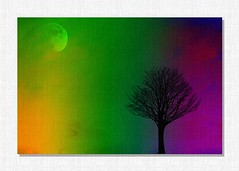The tree and moon ... (Julie Greg) Tags: art abstract tree moon canon colours texture