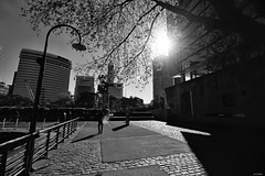 (A. Neto) Tags: t5i eos canont5i700d canonefs1018isstm canon buenosaires 700d blackwhite bw monochrome shadows cityscape cityview street people buildings sun argentina