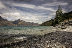 IMG_2739 (iamChristo) Tags: tree lake new zealand nz queenstown mountain cloud rock pebble canon 550d eos t2i landscape wakatipu