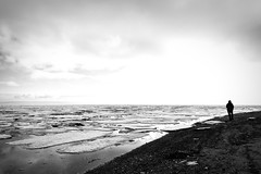 eternity (bluechameleon) Tags: boundarybay ladnerbc sharonwish beach blackwhite bluechameleonphotography clouds ice landscape melancholic minimallandscape nature ocean silhouette sky snow winter ngc person