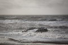 Blæsevejr ved høfde 1 Ferring (Walter Johannesen) Tags: bovbjerg ferring høfde 1 blæsevejr kuling hård vind hard wind strong vestkyst westcoast