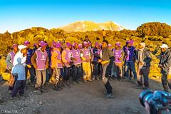 _FOU9540.jpg (Murray Foubister) Tags: 2018 gadventures spring mountainsm flora travel people treking africa tanazania