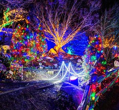 Christmas Train (JoelDeluxe) Tags: rol riveroflights abq biopark nm december 2018 albuquerque biological park pnm light display colors lights sculptures fantasy newmexico hdr joeldeluxe