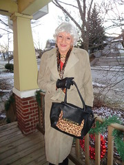 Ready To Meet The World (Laurette Victoria) Tags: purse coat trenchcoat silver woman laurette gloves porch winter milwaukee