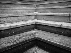 Steps (Anthony Kernich Photo) Tags: adelaide australia southaustralia sa stairs steps symmetry shape repeating parallel blackandwhite bw monochrome grayscale contrast square olympusem10 olympus olympusomd streetphotography pattern flickr closeup detail viral abstract wood lines flickrheroes