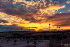Más atardeceres ... (Fran-Garrido) Tags: nikon d750 irix15mmf24 qdd malaka málaga paisajes atardecer sol nubes aerogeneradores viento 500px
