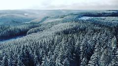 Winterwonderland Eifel (huppmarcel) Tags: wälder wald panorama nationalparkeifel landschaft traumhaft verschneit schnee bäume eifel