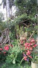 san-bernardo-del-viento---paisajes--mapco_46169131692_o (invemarbi) Tags: sanbernardodelviento córdoba andreagaray comunidades ecoturismo mapco asociaciones invemar san bernardo