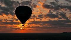 Sunrise ballooning in Bagan (gerard eder) Tags: world travel reise viajes asia southeastasia burma birmania birma myanmar bagan sunrise ballooning paisajes panorama landscape landschaft outdoor natur nature naturaleza wolken clouds nubes sonnenaufgang sky