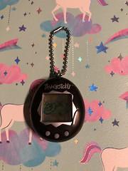 Tamagotchi #cute #love #90s #tamagotchi #black #grey (direngrey037) Tags: cute love 90s tamagotchi black grey