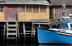 It's All Good (peterkelly) Tags: digital canon 6d northamerica canada newfoundlandlabrador stjohns quidividi blue boat fishing dock skull star building windows harbor harbour water