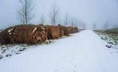 Hay along the white way (Ingeborg Ruyken) Tags: sneeuw morning empel hay natuurfotografie mist kanaalpark instagram fog 500pxs ochtend flickr snow
