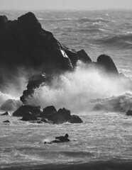 Surfer On The Rocks (martin-nolan) Tags: nikon d7200 70300mm waterford water surf surfer waves rocks sea winter ireland