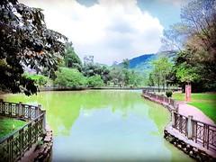 Taman Persekutuan Main Entrance (TTDI Park) 78, Jalan Abang Haji Openg, Taman Tun Dr Ismail, 60000 Kuala Lumpur, Wilayah Persekutuan Kuala Lumpur https://maps.app.goo.gl/ejFJf  https://foursquare.com/soonlung81  Transportation service: 交通服務: Servicio de t (soonlung81) Tags: reizen semester 여행 viaggio malaysia lake vakantie holiday asian 馬來西亞 การเดินทาง 휴일 see trip fiesta 湖 ทะเลสาป vacances озеро tasik بحيرة سفر 亞洲 путешествие tree 度假 旅行 voyage lago lac عطلة праздник vacanza resa วันหยุด asia meer ホリデー viaje 호수 reise urlaub travel sjö