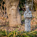 Saint Francis Keeping Watch on this Garden