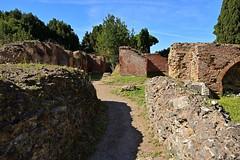 Rome / Ostia Antica / Ruins / Old Street (Pantchoa) Tags: rome italie europe ruine ruinesromaines pierres briques mur vieux ancien antiquités constructions maisons arbres nature ciel