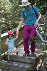 walking with daddy (louisa_catlover) Tags: zoo tarongazoo sydney nsw australia summer january portrait family child toddler daughter tabby tabitha husband father karl