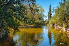 _VMG6109 (V.Maza) Tags: parcdecansolei parcdecansoleiicalarnús lago jardines jardins landscape waterscape naturaleza naturalezaviva badalona bdn barcelonés barcelona bcn nature nikon d7100 catalunya spain vicentemaza