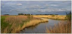 Texels landschap (Ger Veuger) Tags: landschap landscape texel noordholland dutchlandscape