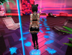 Ghabyanka-Mad-House-kitty (ghabyanka.sl) Tags: ghabyanka secondlife belleza flickr love chicas foto sexygirls catwa kisses me dance fiesta party cat cute brunette fittness fitnessdigital hotgirl sadgirlroom