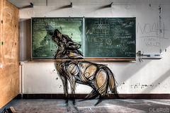 Big Bad Wolf (LaR0b) Tags: ue urbex urban exploration exploring decay abandoned lar0b lost hdr highdynamicrange graffiti art animal wolf blackboard school