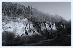Amtssteinbruch Donoer Berg (SurfacePics) Tags: rödinghausen landkreismindenlübbecke nrw nordrheinwestfalen deutschland germany europe europa wald wiehengebirge steinbruch landscape landschaft schwarzweis blackwhite blackandwhite einfarbig monochrome bw sw outdoor februar 2019 surfacepics amazing stunning hiking forest bäume klippe sandsteinbruch mining altbergbau sonyalpha77ii sonyalpha photo foto frühling sunny tumblr instagram instalike donoerberg