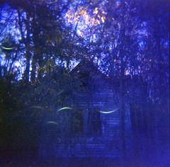 ghosthouse (jake w) Tags: holga 120 fujifilm house overgrown