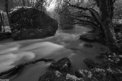Gros BLocs dans le Lison (francky25) Tags: gros blocs dans le lison nans sous sainte anne rivière franchecomté doubs noir et blanc hiver