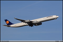AIRBUS A340 642 Lufthansa D-AIHB 0517 Frankfurt septembre 2018 (paulschaller67) Tags: airbus a340 642 lufthansa daihb 0517 frankfurt septembre 2018