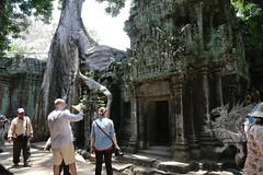 Angkor_Ta Prohm_2014_30