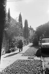 NOLA (bambusfotos) Tags: 35mm blackandwhite film neworleans streetphotography kodak trix 400 olympus mjuii