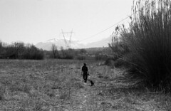 God tried till the day he left (antonio.secondo) Tags: yashica bergger italy abruzzo blackandwhite analog