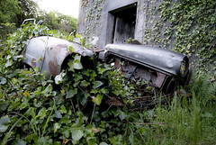 forgotten (OmaWetterwachs) Tags: irland ireland eire travel urbex urban decay rust car efeu
