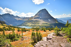 Searching far and wide (DirtyDeeble67) Tags: montana glacier glaciernationalpark gnp nikon d7500 dlsr nikond7500 outdoors nature naturewalk hike hiking travel traveling exploring explore discover adventure adventuring photography photograph photo nationalpark nationalparkservice nps hiddenlakes lakes mountains mountaintops rockymountains mt siyehbend searching beautiful