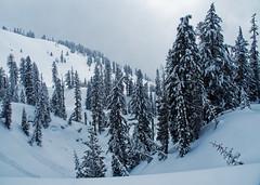 Mountains (wirehead) Tags: em5mk2 918mm snowshoe lassenvolcanic