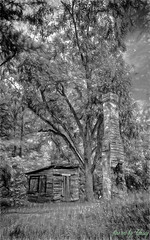 Old Farm Scene (fine art by Christy) Tags: farmpainting oldhouse oldfarm farm oldbarn barn rustic countryscene farmhouse farmphoto oldhousephoto blackandwhiteoldhouse blackwhite