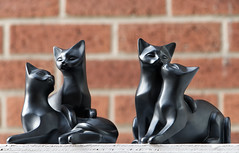 Cliche Saturday - cats on a hot tin roof (alisonhalliday) Tags: blackcats cats canoneos77d canonefs18135mm cf19 pairs ornaments stilllife clichesaturday hcs