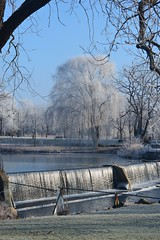 Hoar Frost on the Willow {Explored} (photomama777) Tags: hoarfrost willow dam beckmanmill tree beloit december 2018 wisconsin winter rockcounty