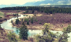 Beautiful British Columbia ... (Mr. Happy Face - Peace :)) Tags: nature rockies bc cans2s trees forest river art2019 hff