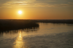 Missouri River Sunset (Notley Hawkins) Tags: notleyhawkins notley 10thavenue missouri httpwwwnotleyhawkinscom missouriphotography notleyhawkinsphotography outdoor landscape outdoors 2019 river flood floodstage missouririver trees rocheportmissouri coopercountymissouri sun sunset april