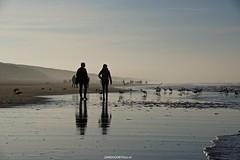 DSC01873 (ZANDVOORTfoto.nl) Tags: beachlife strand aanzee december zandvoort nederland netherlands beachphoto strandfoto