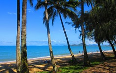 Trinity Beach - Queensland, Australia (jeffglobalwanderer) Tags: trinitybeach queensland australia beachlife beachwalkway cairns ocean pedestrianwalk walkingpath trail seaside palmgrove palmtree palms palmcove