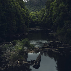 Savage River, Tasmanian West Coast