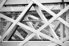 Lignes providentielles (Tonton Gilles) Tags: alençon normandie parc de la providence passerelle lignes grillage grille noir et blanc graphisme